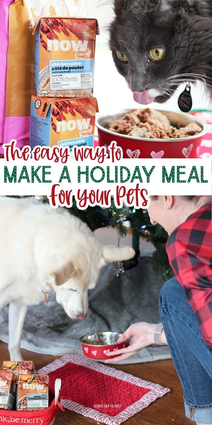 Looking For A High Quality Premium Pet Food To Treat Your Dog Or Cat This Holiday See The Holiday Meal That All 3 Of My Pets G Pets Dogs And Kids