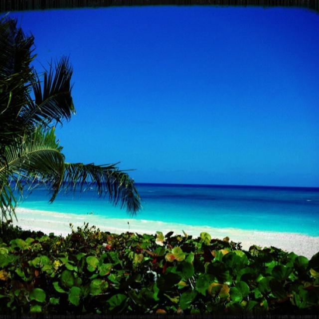 Harbour Island, son havre tranquille, sa Pink Sand Beach, Captain Bob's Market, The SugarMill...
