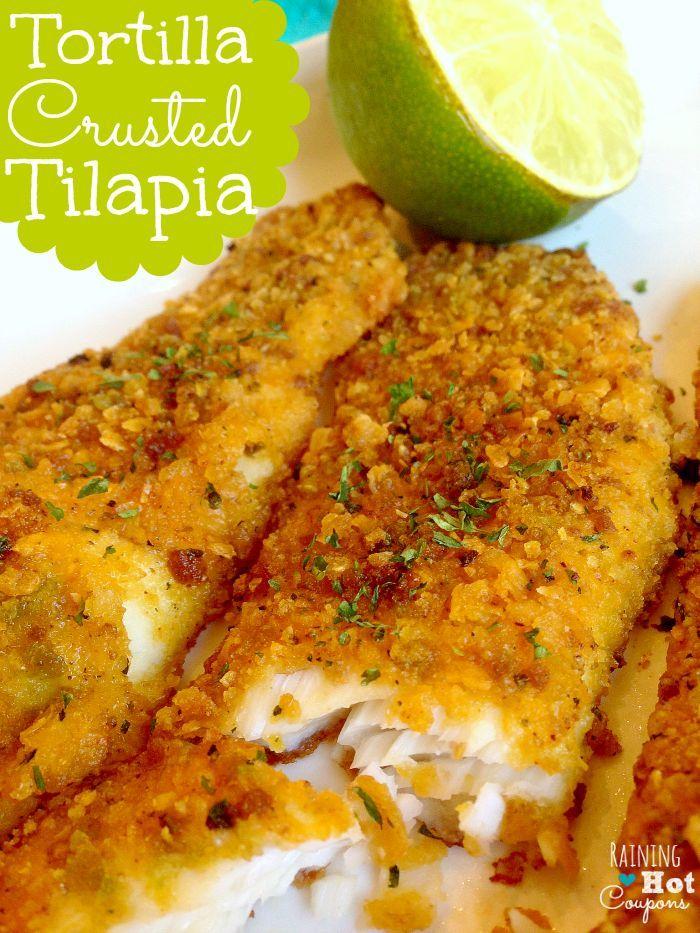 Tortilla crusted tilapia receta comida deliciosa for Comida para tilapia