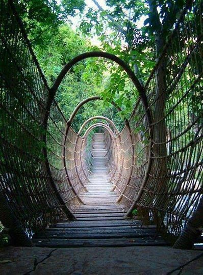 The Spider Bridge in Sun City Resort, South Africa