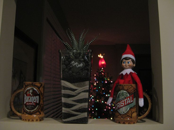 December 16, 2014 ~ Sparky sitting in mom and dad's wooden beer mugs from Cuba...Could he be sending a hint?  One can wish!  ;)