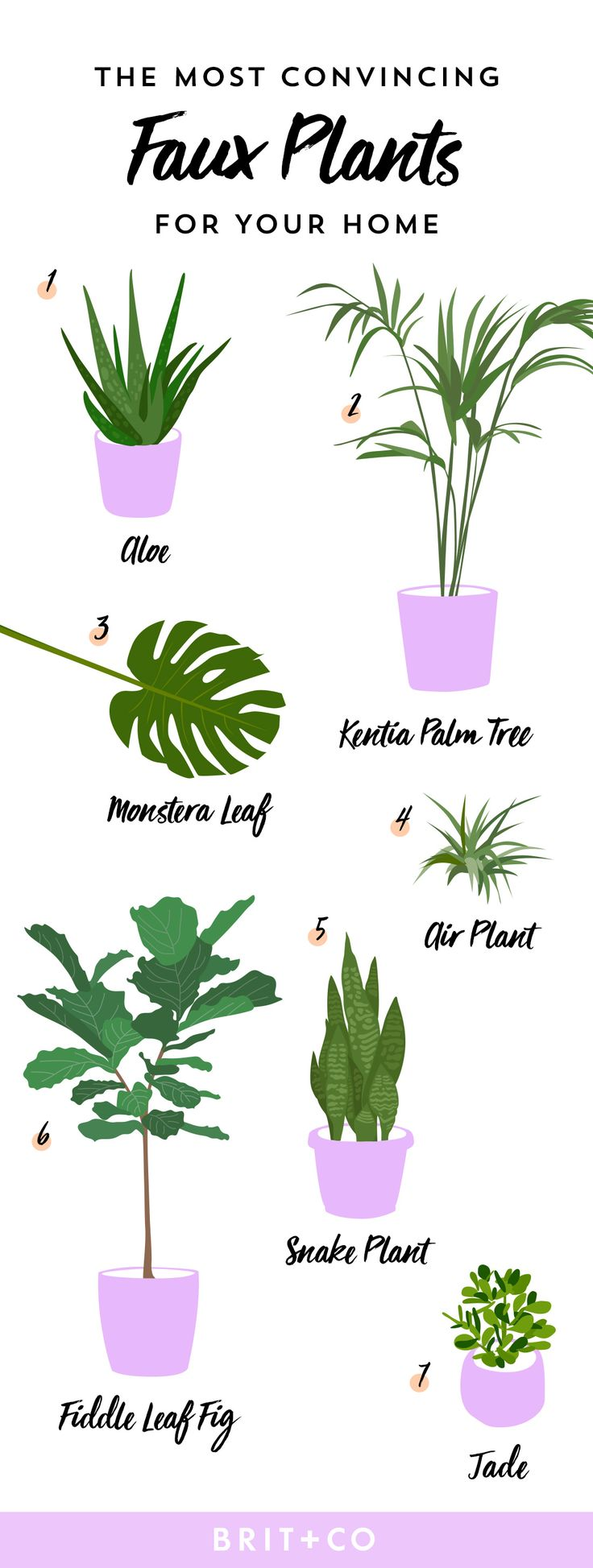 Save this infographic to help you pick the artificial plants for fauxliage that doesn't look faux or fake, like aloe, kentia palm tree, monstera leaf, air plant, snake plant, fiddle leaf fig + jade.
