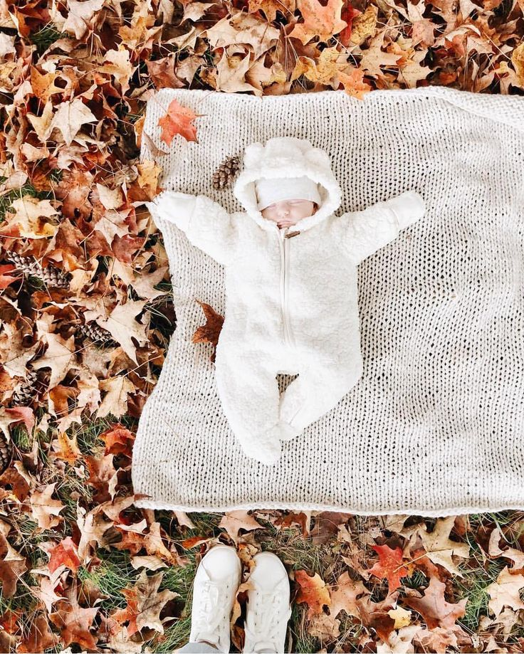 Windy + Co (@windyknitsco) • Instagram photos and videos