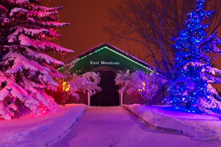 Spruce Meadows: Christmas at Spruce Meadows