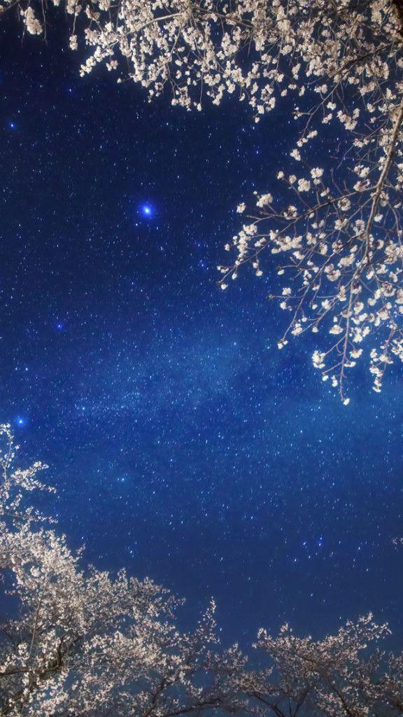 Cherry Blossom Galaxy