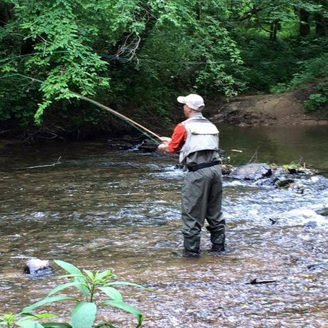 17 best images about on the fly on pinterest fishing for Kentucky river fishing