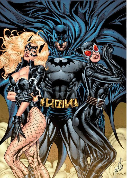 """Batman, Black Canary, & Catwoman by Al Rio *"" This looks more like an Axe commercial  More Comic Art @ http://groups.google.com/group/Comics-Strips & http://groups.yahoo.com/group/ComicsStrips &  http://www.facebook.com/ComicsFantasy & http://www.facebook.com/groups/ArtandStuff"