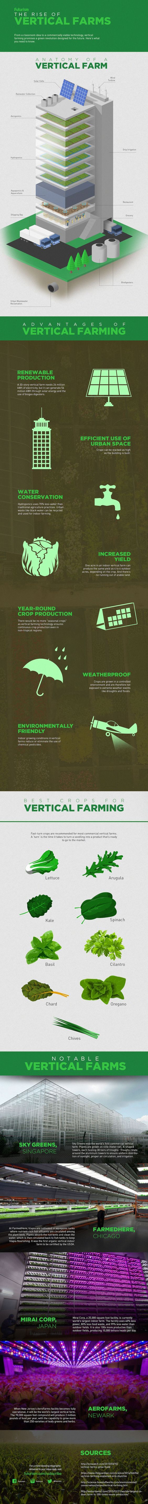 Check out Vertical Farming For Compact Spaces | Types of Farming at https://homesteading.com/vertical-farming/