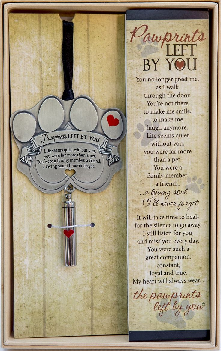 Pawprints Left by You Pet Memorial Ornament in 2020