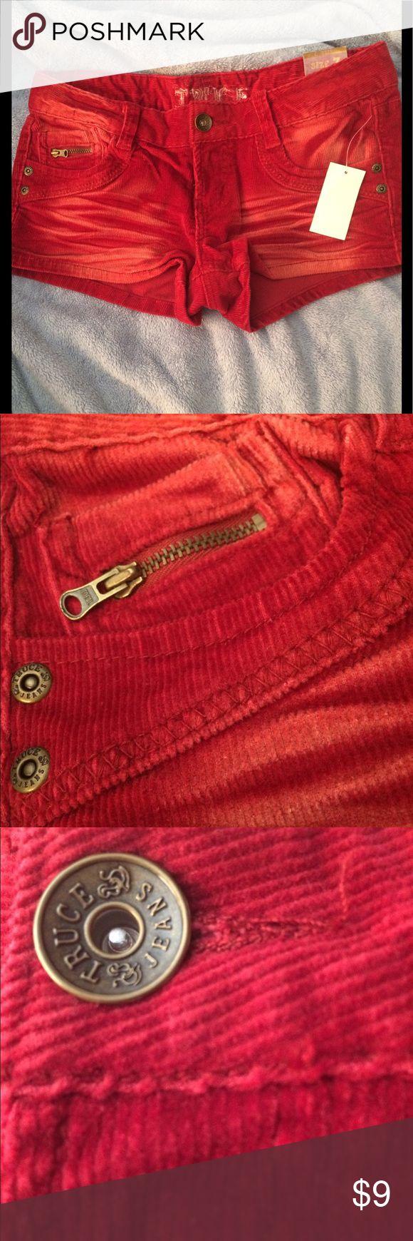 Cute brick red corduroy shorts Cute brick red corduroy shorts. Never worn Truce Shorts