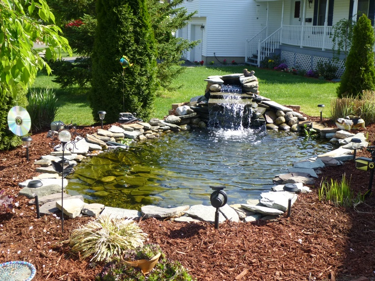 17 best images about pond and rock garden ideas on for Rock ponds designs