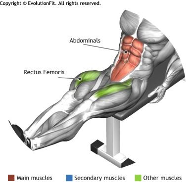 ABDOMINALS -  SEATED FLAT BENCH LEG PULL IN