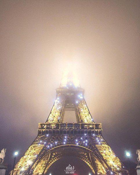 В Париже из-за угрозы экологической катастрофы весь общественный транспорт стал бесплатным.