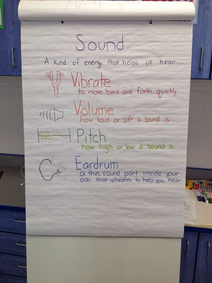 Sound Science Vocabulary for 2nd grade- anchor chart