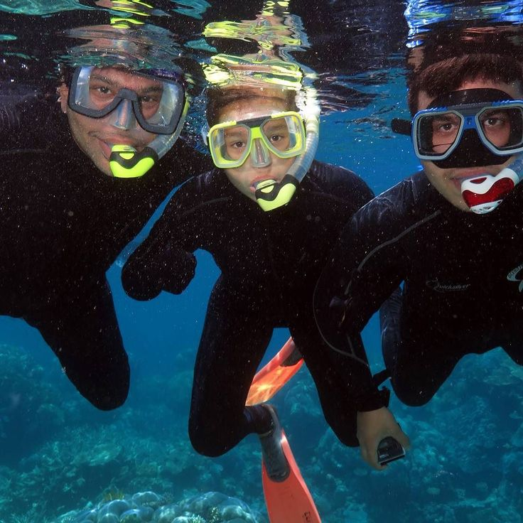 Snorkelling the Outer Great Barrier Reef #silversonic #greatbarrierreef #nemo by michaellamb71 http://ift.tt/1UokkV2