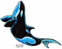 orca tattoo designs - Google Search