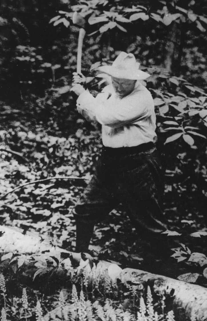 Teddy roosevelt guns to be displayed at nra national - Teddy Roosevelt Chopping Wood Google Search