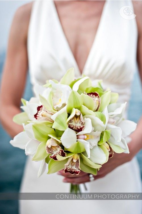 Pretty! Green and white Cymbidium orchids. Pretty close to the bouquet I carried in my wedding!