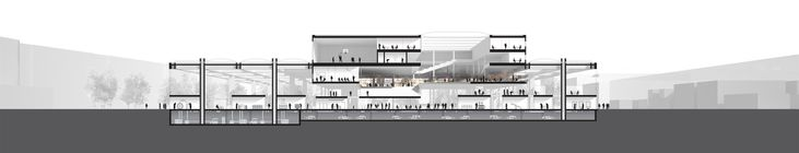 Oma Wins Competition For École Centrale Engineering School In Saclay, France,Section