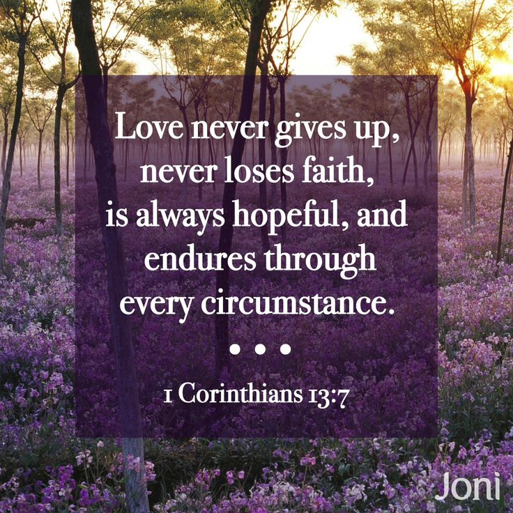 """""""Love never gives up, never loses faith, is always hopeful, and endures through every circumstance."""" -1 Corinthians 13:7 [Daystar.com]"""