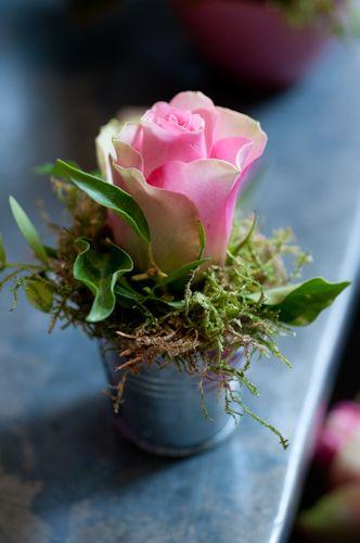 single rose in a mini bucket