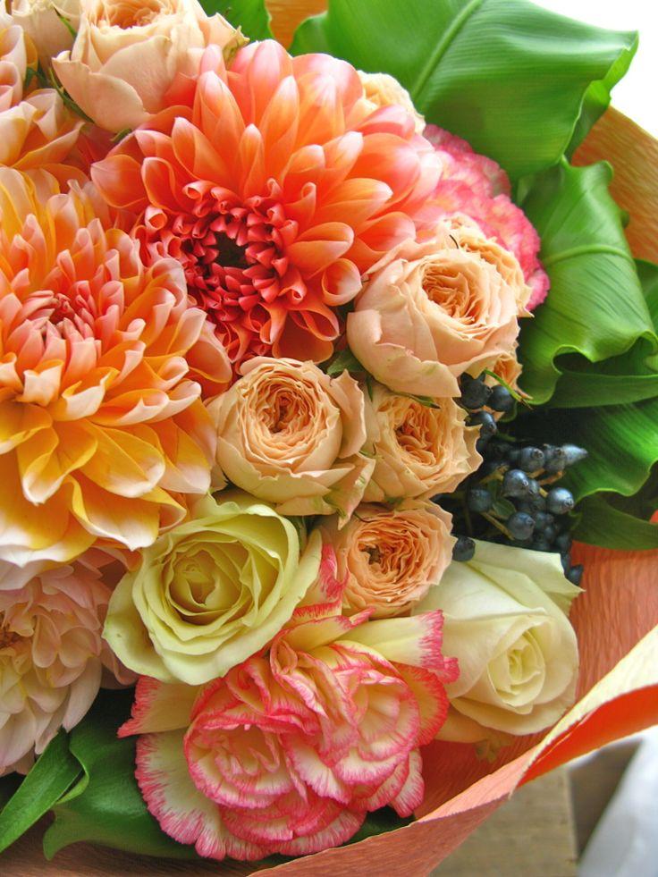 『出産お祝い花 まんまるダリアたくさん花束』