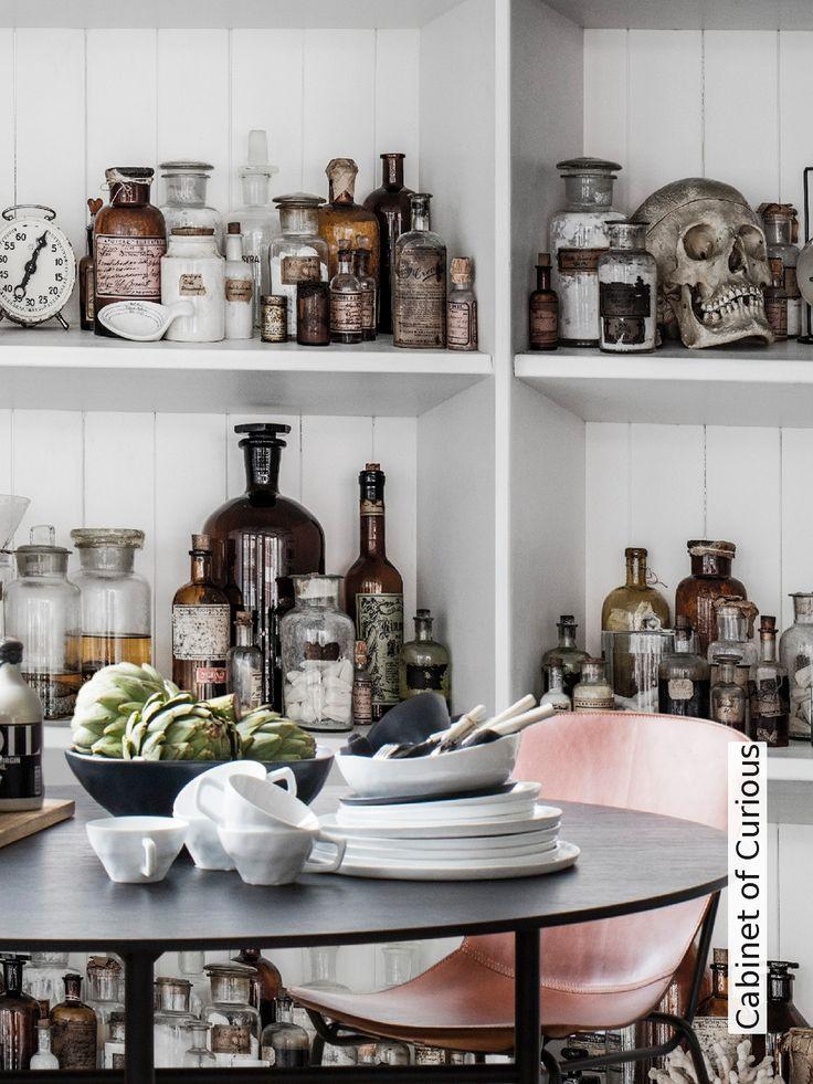 Tapete: Cabinet of Curious - Die TapetenAgentur