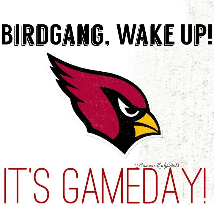 Arizona Cardinals Gameday! Arizona LadyBirds #BirdGang #NFLfemale @nfl 2015