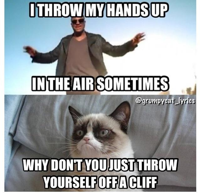 Grumpy Cat vs Taio Cruz