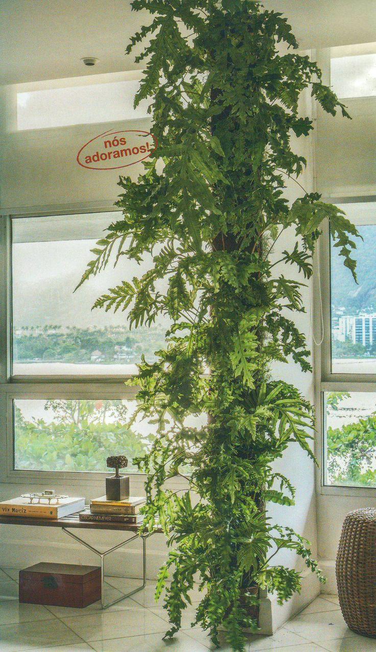 1000 Ideas About Indoor Vertical Gardens On Pinterest