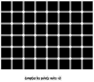Une illusion d'optique n'a de sens que si elle crée un conflit entre l'oeil et le cerveau. Et de cette redoutable bataille naît l'illusion en elle-même, la sensation de voir autre chose que ce qui est