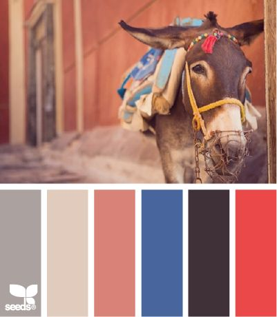 creature color 7.2.12.... love this combo! Such southwestern colors!