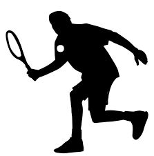 Image result for silhouette sports