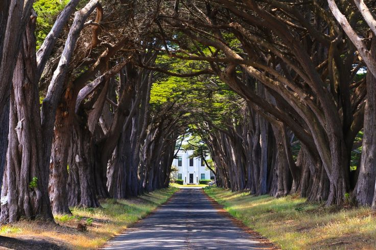 California Bucket List: 50 Things to Do Before You Die