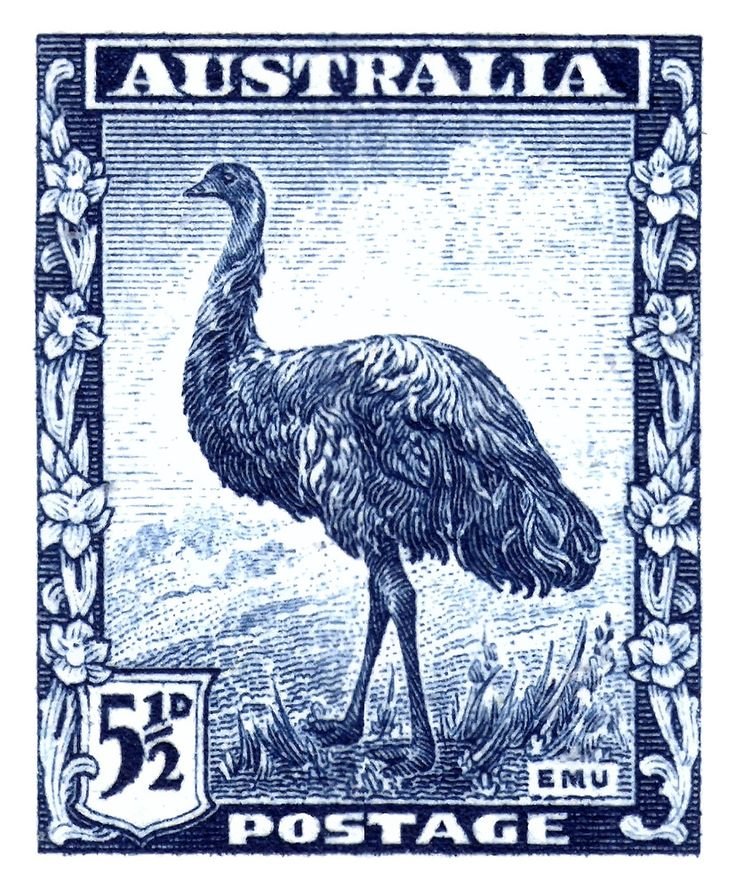 1942 Australia Emu Bird Postage Stamp,emu,australia,australian fauna,native bird,antique stamp,mail,ephemera,vintage postage,outback,native australian,ostrich