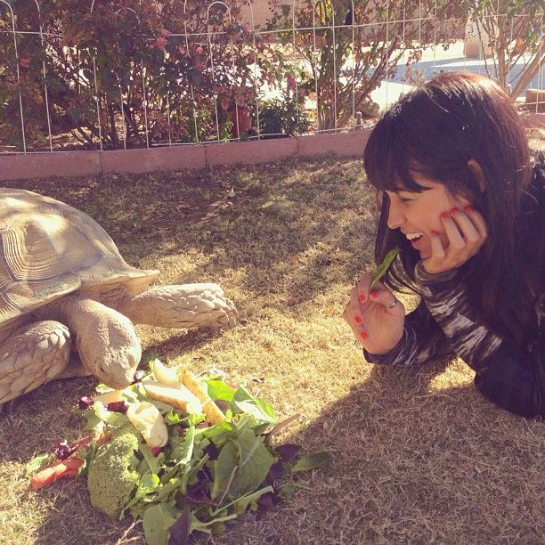 moriah peters with a turtle