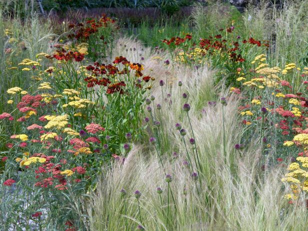 "Although some bed head gardens combine flowers and grasses, don't worry too much about color, Maffei advises. He pairs narrow-leaved plants with broad-leaved ones and vase-shaped plants with those that grow in mounds. ""Then toss in a few [plants] that have long, wiry stems that will spray out around them. Don't mass lots of the same plant in one place, mix them up a little."""