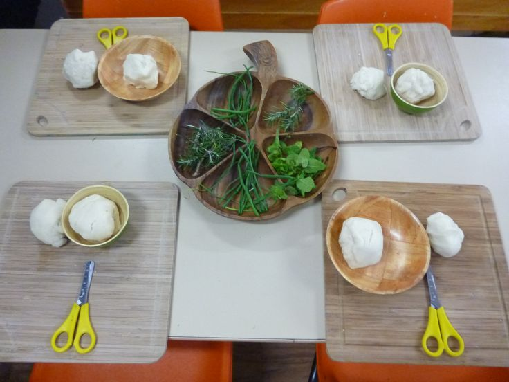 Snipping fresh herbs into uncoloured play dough