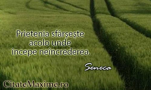 """""""Prietenia sfarseste acolo unde incepe neincrederea.""""  #CitatImagine de Seneca  Iti place acest #citat? ♥Like♥ si ♥Share♥ cu prietenii tai.  #CitateImagini: #Prietenie #Neincredere #Seneca #romania #quotes  Vezi mai multe #citate pe http://citatemaxime.ro/"""