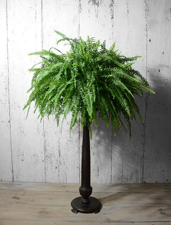 Antique Fern Stand Antique Plant Stand Antique Lamp