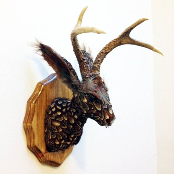 i actually love this.     Pheasant Feather Jackalope: Faux Taxidermy Wall Decor. $375.00, via Etsy.