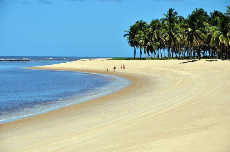 PRAIA DO GUNGA (ALAGOAS) BRAZIL Nordeste brasileiro: conheça 25 praias de tirar o fôlego