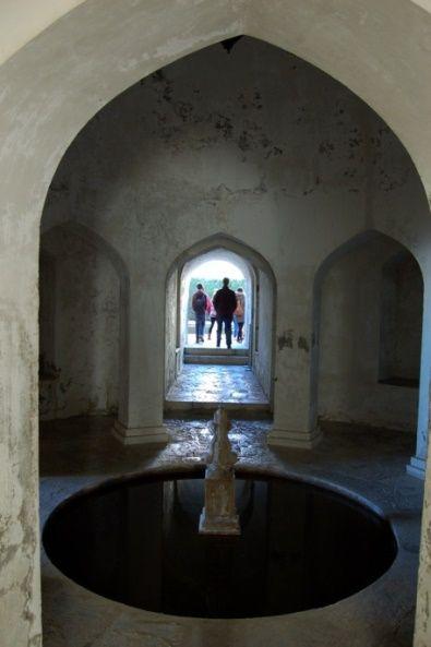 En la última visita de escolares recibimos al IES Fuente de la Negra, Fuensanta de Martos (Jaén) ¡Todos buscábamos las mejores fotos! #familyMW