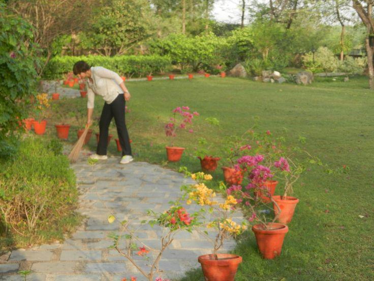 Shramdaan (Community Service) in Gnostic Centre gardens