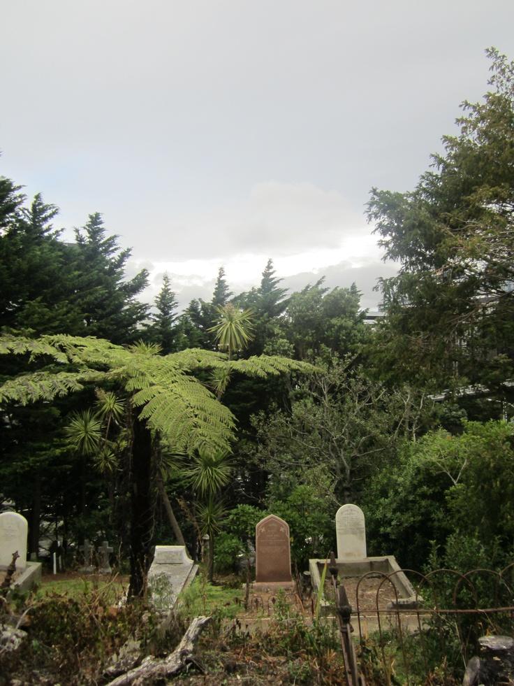 Bolton Str Cemetery, Wellington, NZ