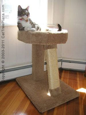 ... about Cat Tree Plans on Pinterest | Cat Trees, Cat Condo and Cats