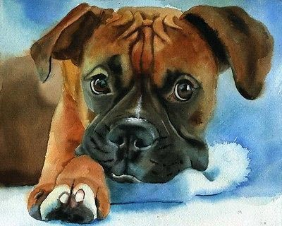 Боксер собака оригинал искусство - топ поп-арт живопись маслом -- 24 дюймов художественная роспись # лучших животных декора холст ,