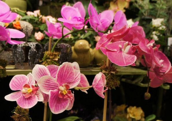 """Read: """"If You Insist On Buying Fake Flowers Read This First"""" #fauxflowers #artificialflowers"""