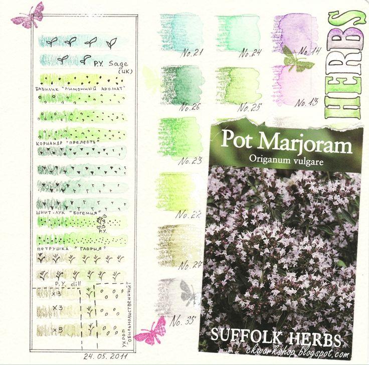 Page1_Herbs_MAIN.jpg (978×970)