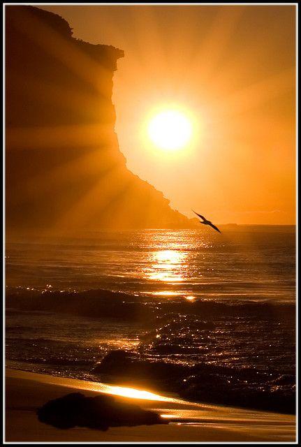 Dawn at Garie Beach in Royal National Park, NSW, Australia